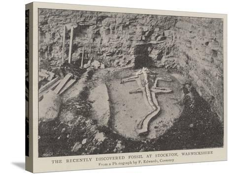 The Recently Discovered Fossil at Stockton, Warwickshire--Stretched Canvas Print