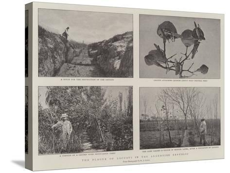 The Plague of Locusts in the Argentine Republic--Stretched Canvas Print