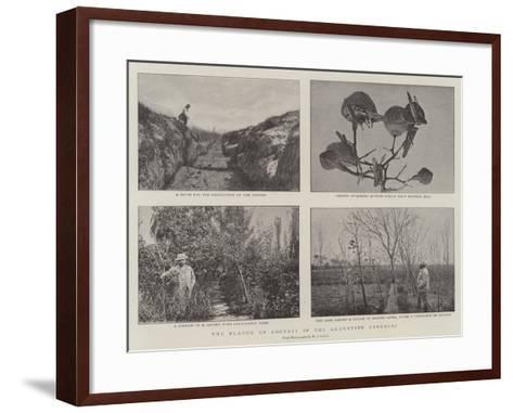 The Plague of Locusts in the Argentine Republic--Framed Art Print