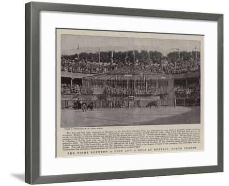 The Fight Between a Lion and a Bull at Roubaix, North France--Framed Art Print