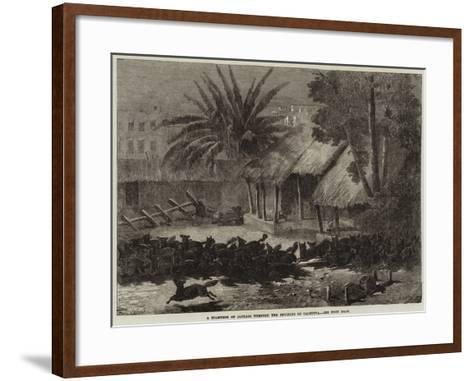 A Stampede of Jackals Through the Environs of Calcutta--Framed Art Print