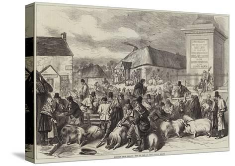 Sketches from Ireland, the Pig Fair at Trim, County Meath--Stretched Canvas Print
