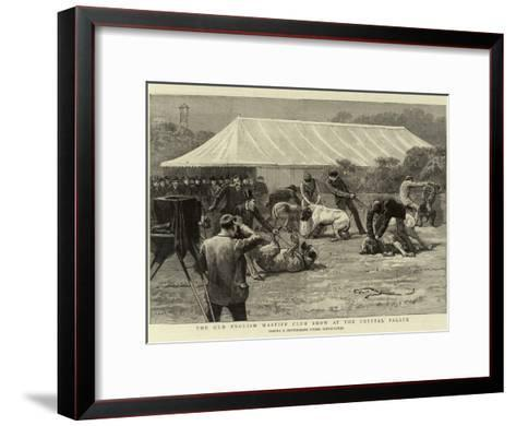 The Old English Mastiff Club Show at the Crystal Palace--Framed Art Print
