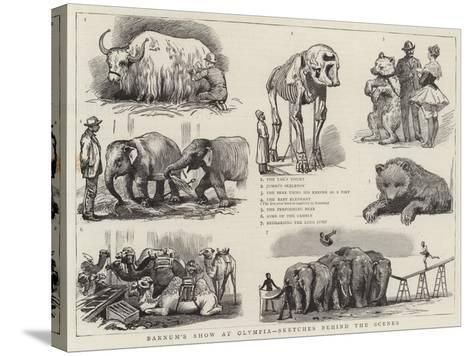 Barnum's Show at Olympia, Sketches Behind the Scenes--Stretched Canvas Print