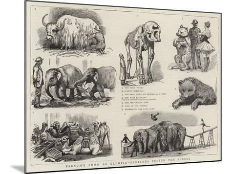Barnum's Show at Olympia, Sketches Behind the Scenes--Mounted Giclee Print