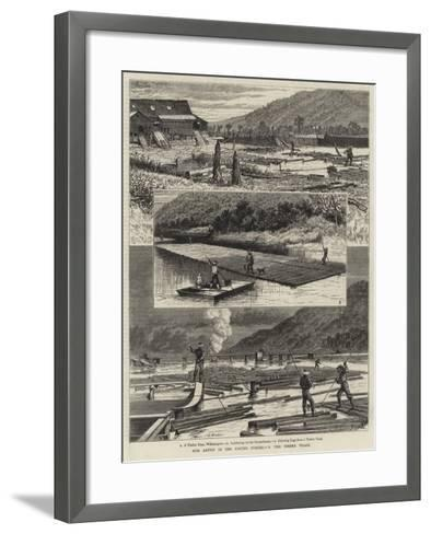 Our Artist in the United States, V, the Timber Trade--Framed Art Print