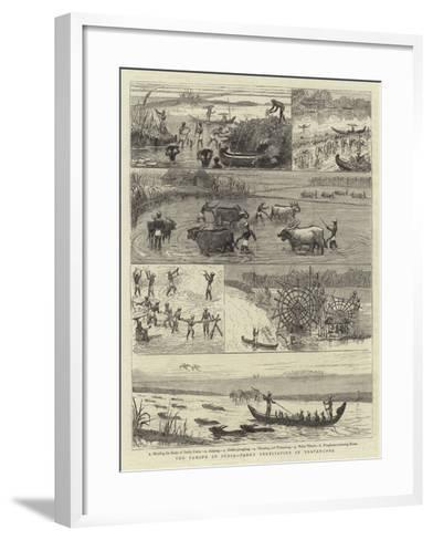 The Famine in India, Paddy Cultivation in Travancore--Framed Art Print