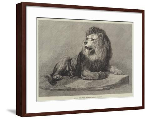 The Old Lion of the Zoological Society's Collection--Framed Art Print
