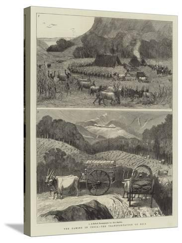 The Famine in India, the Transportation of Rice--Stretched Canvas Print