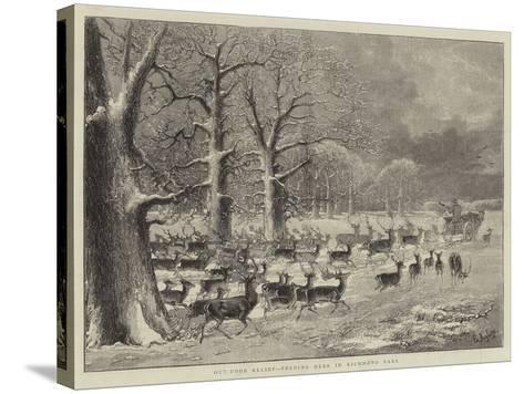 Out-Door Relief, Feeding Deer in Richmond Park--Stretched Canvas Print
