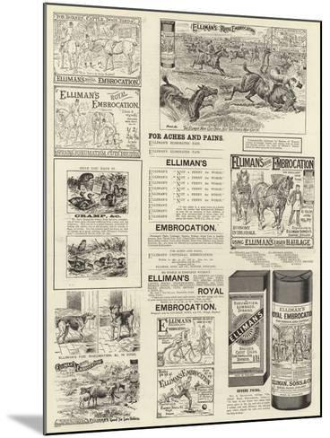 Advertisement, Elliman's Royal Embrocation--Mounted Giclee Print