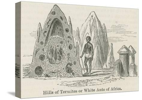 Hills of Termites or White Ants of Africa--Stretched Canvas Print