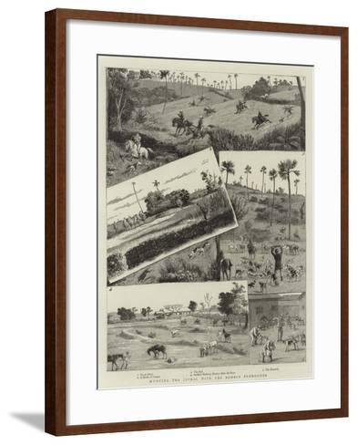 Hunting the Jackal with the Bombay Foxhounds--Framed Art Print