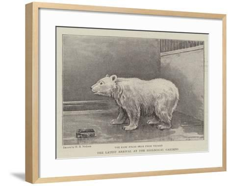 The Latest Arrival at the Zoological Gardens--Framed Art Print