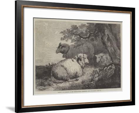 Sheep, in the International Exhibition--Framed Art Print