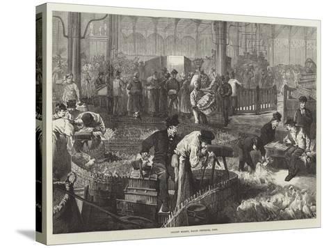 Poultry Market, Halles Centrales, Paris--Stretched Canvas Print