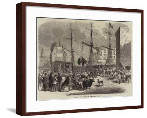Shipping Wild Animals in the London Docks--Framed Art Print