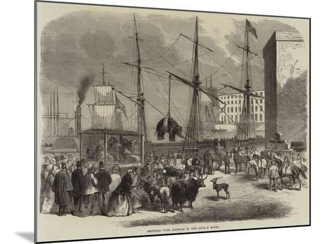 Shipping Wild Animals in the London Docks--Mounted Giclee Print