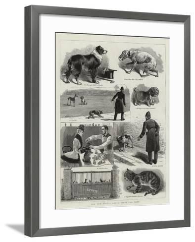 The New Police Regulations for Dogs--Framed Art Print