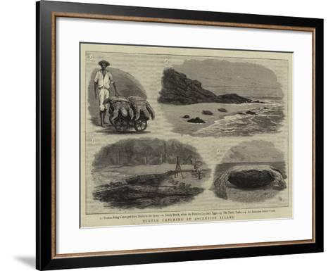 Turtle Catching at Ascension Island--Framed Art Print