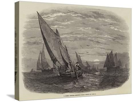 Mackerel Fishing, Brighton Boats--Stretched Canvas Print