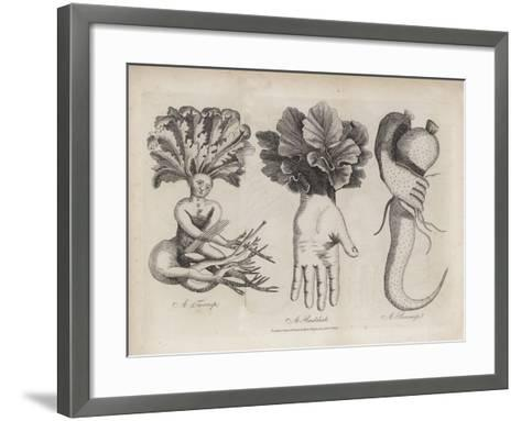 A Turnip, a Raddish, a Parsnip--Framed Art Print