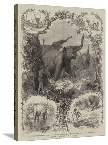 Elephant Hunting in Ceylon--Stretched Canvas Print