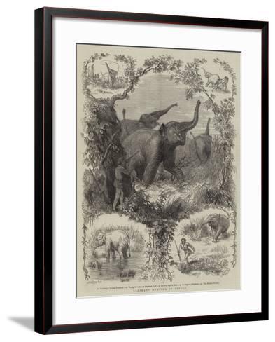 Elephant Hunting in Ceylon--Framed Art Print