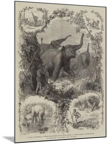 Elephant Hunting in Ceylon--Mounted Giclee Print