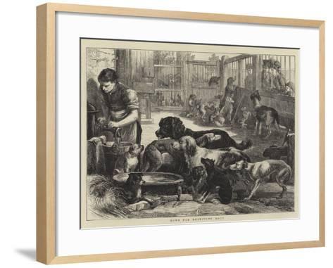 Home for Destitute Dogs--Framed Art Print