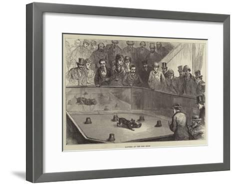 Ratting at the Dog Show--Framed Art Print