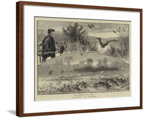 Falconry in England--Framed Art Print