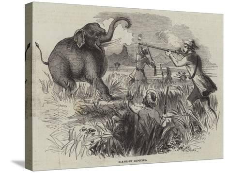 Elephant Shooting--Stretched Canvas Print