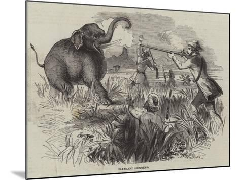 Elephant Shooting--Mounted Giclee Print