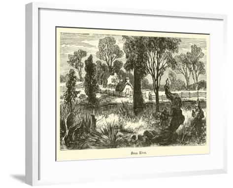 Swan River--Framed Art Print