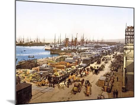 Quai De La Joliette, Marseilles, France, Pub. 1890-1900--Mounted Giclee Print