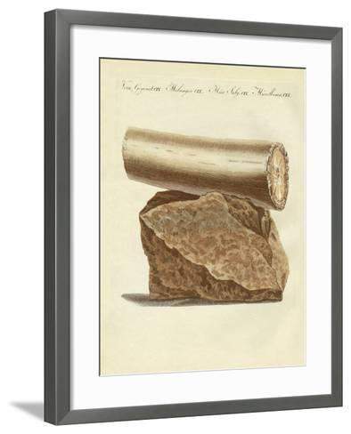 A Part of a Excavated Elephant Tusk Weapon--Framed Art Print