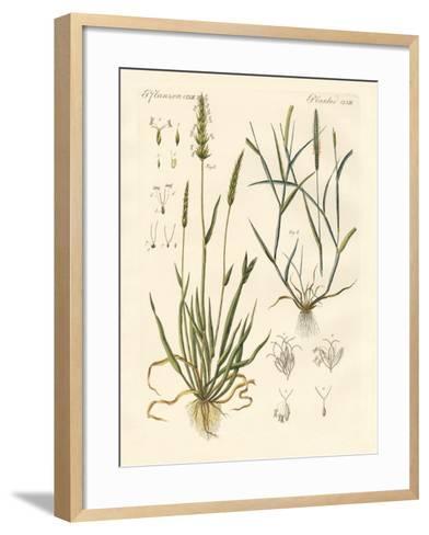 Strange Kinds of Herbage--Framed Art Print