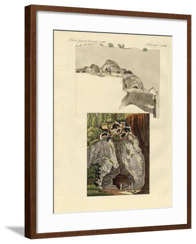 The Cave of Gaillenreuth--Framed Art Print