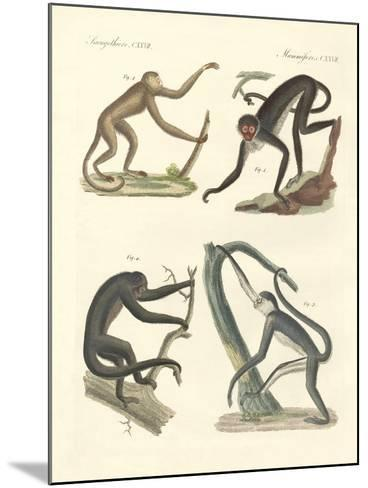 Strange Monkeys of the New Continent--Mounted Giclee Print