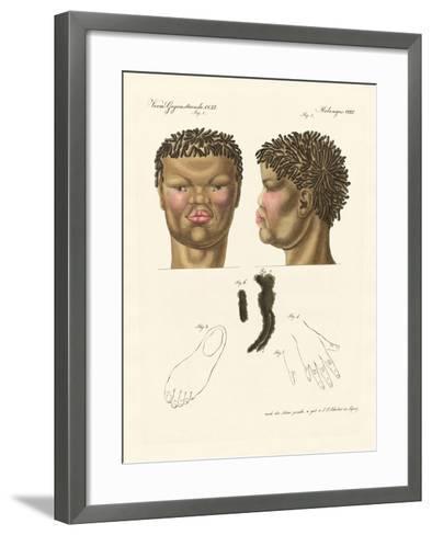 The Hottentot or Bushman--Framed Art Print