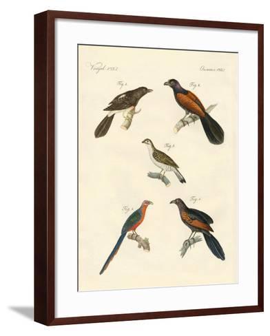 Beautiful Climbing Birds--Framed Art Print