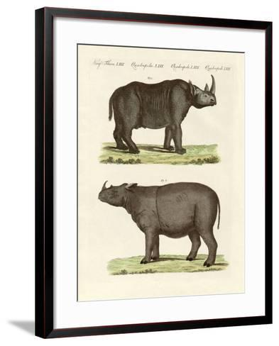 Large Four-Footed Mammals--Framed Art Print
