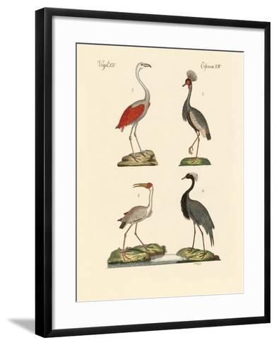 Birds from Hot Countries--Framed Art Print