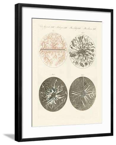 Microscopic View of the Crystallization of Metal--Framed Art Print
