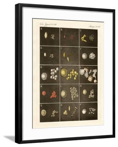 The Pollen or Pollen of Plants--Framed Art Print