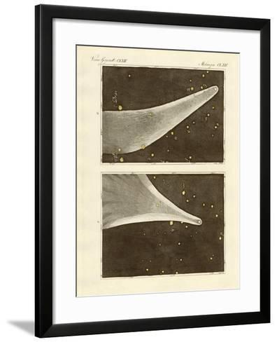 The Great Comet of the Year 1811--Framed Art Print