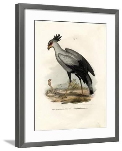 Long-Legged Raptorial Bird, 1864--Framed Art Print