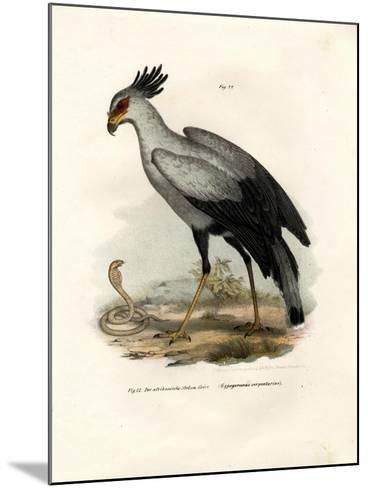 Long-Legged Raptorial Bird, 1864--Mounted Giclee Print