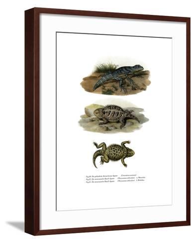 Green Thornytail Iguana--Framed Art Print